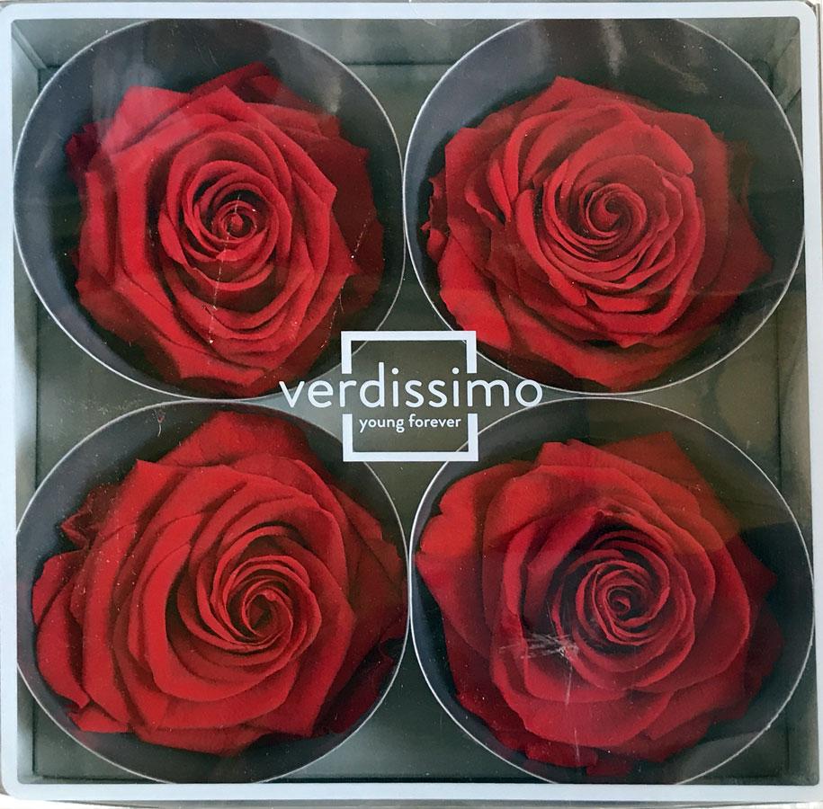 Publilancio srl Fiore Artificiale bomboniera Rosa Grande 8 cm 2 Foglie Beige