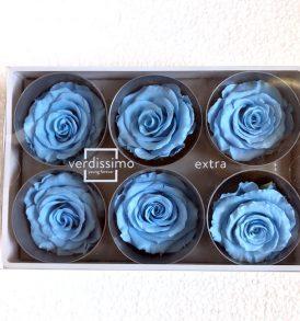 Rose stabilizzate azzurre