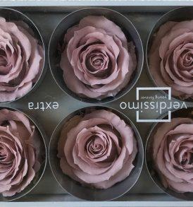Rose stabilizzate fiore ciliegio