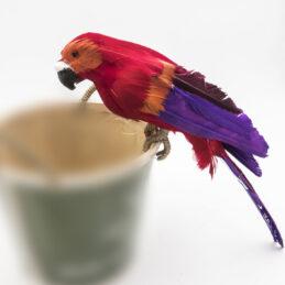Complemento Decorativo che Riproduce un colorato Pappagallo