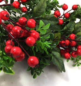 Bacche rosse ramo