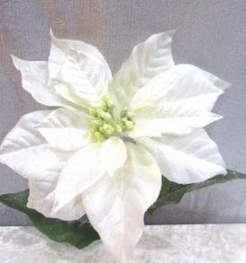 Ramo di poinsettia bianco glitterato