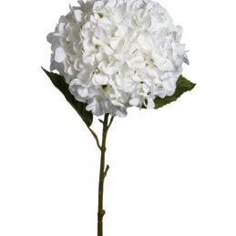 Ramo di ortensia bianco decorativo